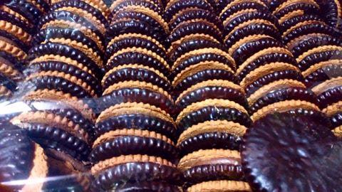 Ciastka Kruche Markizy w Polewie 2,5kg Dybalski